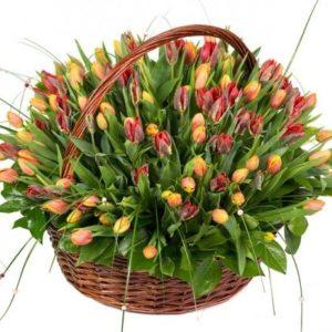 Корзина 151 тюльпан