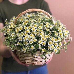 Цветы в корзине Ранчо