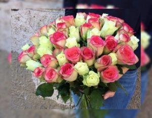 нежные цветы красно-белого цветак