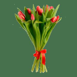 Букет 11 тюльпанов под пленку